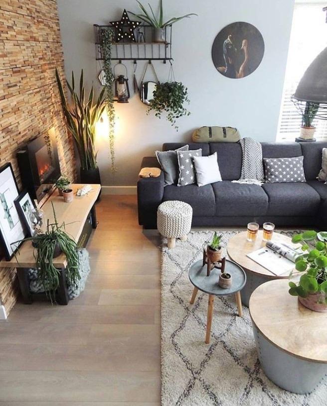Decoração de sala: plantas